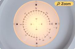 Dandelion compasses Dandelion Compass